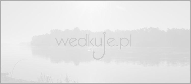 Sklep Wedkarski.com Gdynia (Gdynia)