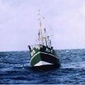 Kutry na Ba³tyku-wêdkowanie z kutra, £owiska - Morze Ba³tyckie | wêdkarstwo - wedkuje.pl