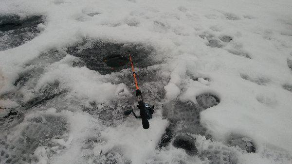 Jezioro Janówko | 2017-02-17 | Wêdkarstwo spinningowe