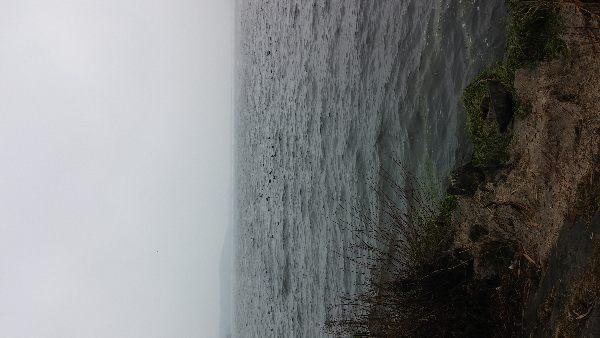 Rzeka Kie³baska | 2017-02-17 | Wêdkarstwo spinningowe