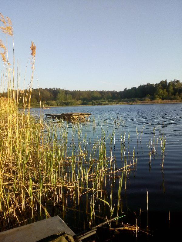 Jezioro Rybnica. Poszukujemy suma lub wêgorza. nocka dam znaæ rano co i jak. pozdrawiam wszystkich nad wod±... Po³amania - Rybnica ID: 20148 | aplikacja wêdkarska wedkuje.pl