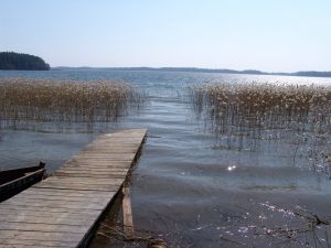 %A3owisko U Romana Sierakowice - ryby, opis, �owisko, w�dkarstwo, mapa, zdj�cia, opinie - wedkuje.pl