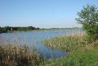 �OWISKA WIELKOPOLSKA, �owiska wielkopolskie, jeziora wielkopolski