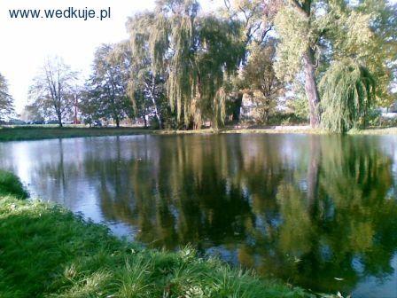 Stawy Rybne forum - Zbiorniki - �owiska, �owienie, Miejsc�wki, Ryby, przyn�ty