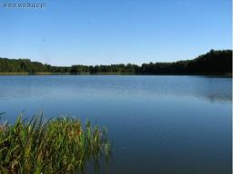 Wêdkarstwo Jeziorowe forum - Jeziora - £owiska, £owienie, Miejscówki, Ryby, przynêty