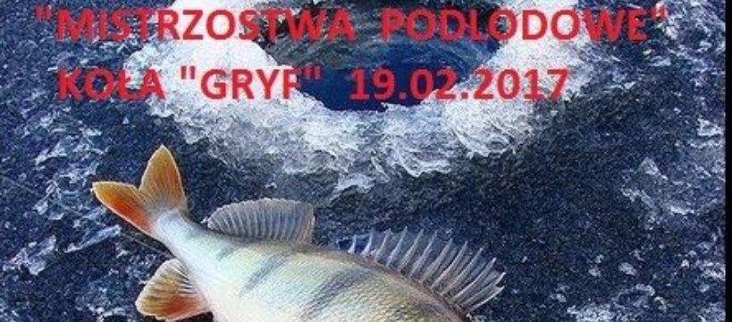 Mistrzostwa Podlodowe ko³a Gryf