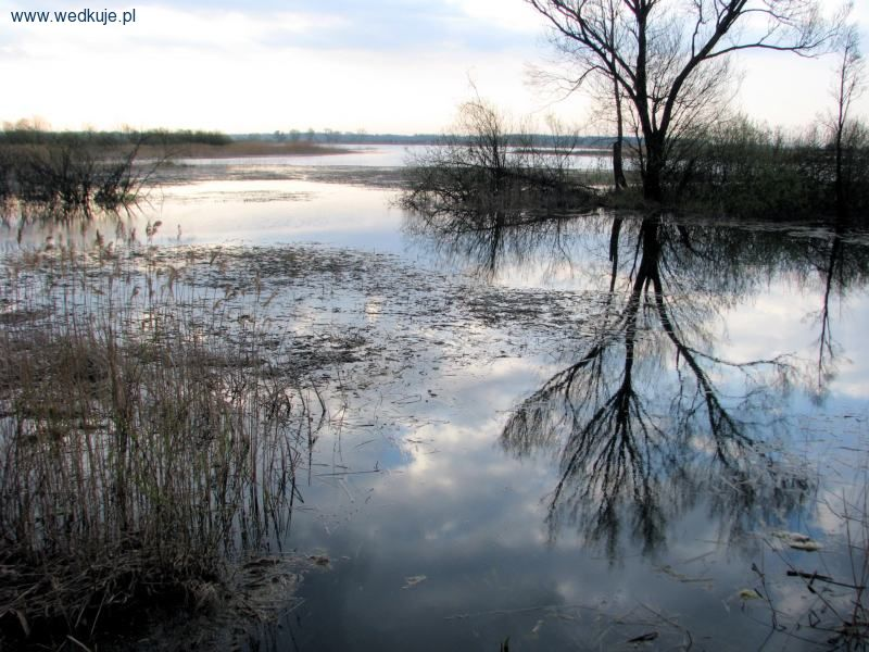 Zbiornik Opole Podedwórze