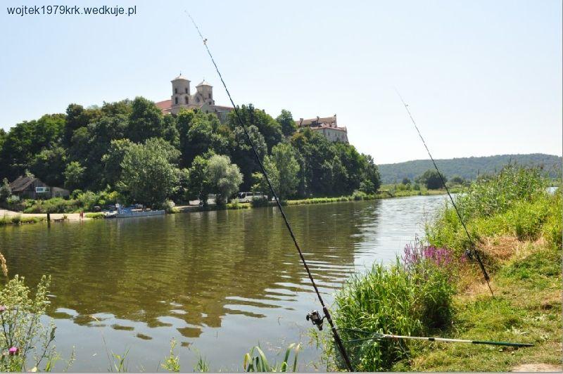 Rzeka Wis³a: od uj¶cia Skawy - do korony D±bie (obw. 2) -  Ma³opolskie |  forum, pogoda - wedkuje.pl, ID: 1114