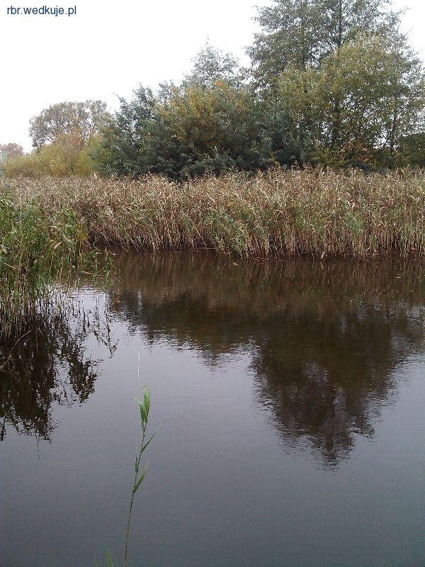 Rzeka I³awka - I³awa Warmiñsko-Mazurskie |  forum, pogoda - wedkuje.pl, ID: 14313