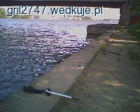 Rzeka Regalica - MI�dzyodrze
