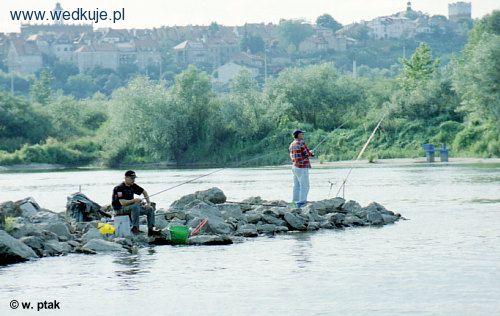 Rzeka Wis³a pod Sandomierzem