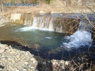 Rzeka górska Szczawnik