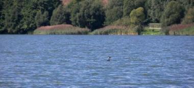 Jezioro Rumiañskie