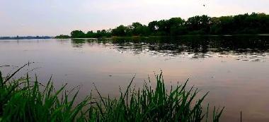 Rzeka Wis³a w P³ocku.