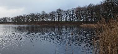 Jezioro D¼wierzno