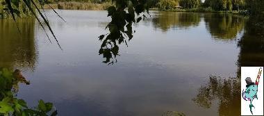 £owisko S³odka Rybka Soko³owice