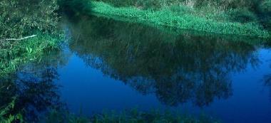 Rzeka Ina- odcinek nizinny