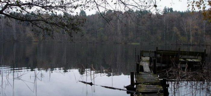 Jezioro Wapiñskie (Okonte)
