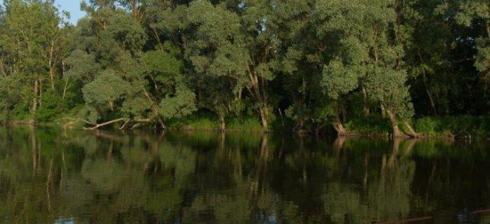 Rzeka Bug - Trojan - Os�owo