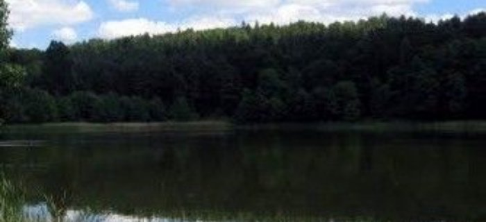 Jezioro Rzepnica