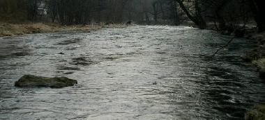 Rzeka Bystrzyca od zapory w Lubachowie