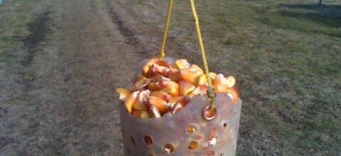 Gotowanie kukurydzy i nêcenie kukurydz±