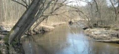 Rzeka Pas³êka w okolicach Braniewa