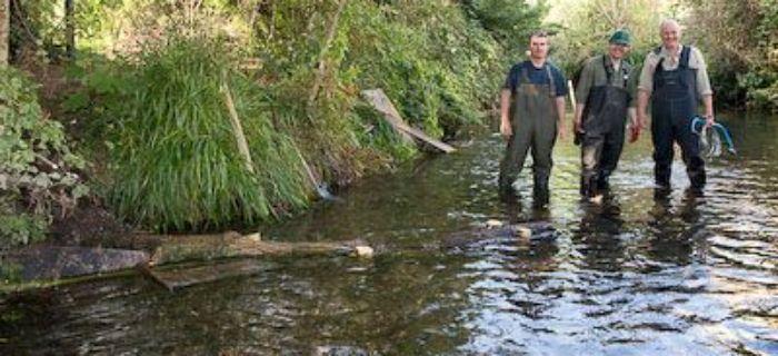 Renaturyzacja ma�ych rzek i potok�w