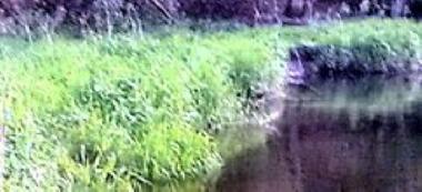 Rzeka Radew