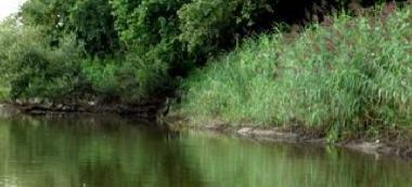 Rzeka Odra Bytom Odrzañski