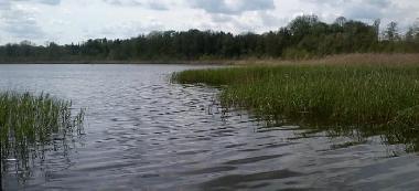 Jezioro Zabór Du¿y