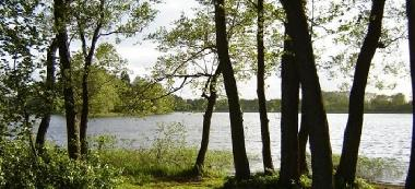 Jezioro Ostrowo (Wyspa)