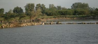 Rzeka Wis³a- Ro¿niaty