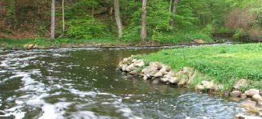 Rzeka Liwa