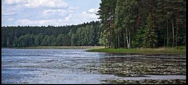 Jezioro Krzywek