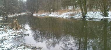 Rzeka Lutynia