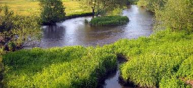 Rzeka Reda