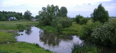 Rzeka Muchawka - Okolice Siedlec