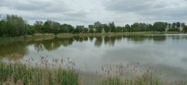Jezioro Krzywiñskie
