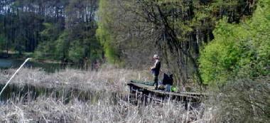 Jezioro Nowojasinieckie i du¿e wêgorze