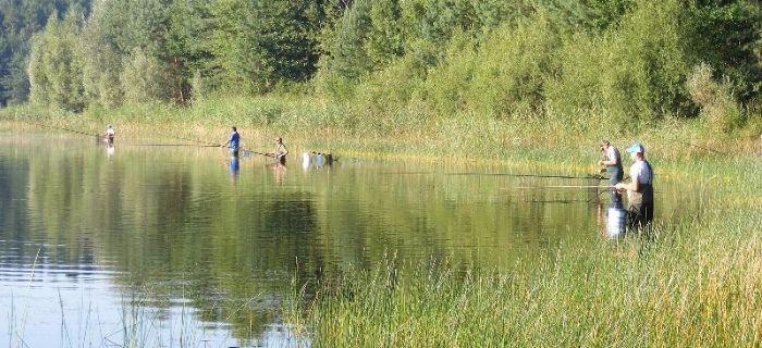 Jezioro Olszanowo Ma³e - Trzciñskie