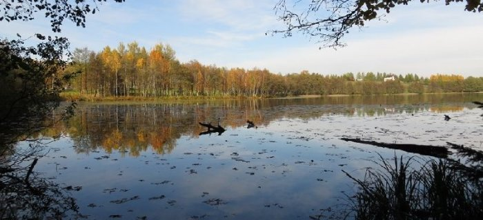 Jezioro £omy