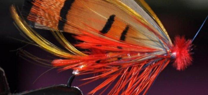 �ososiowa zajawka - muchy �ososiowe