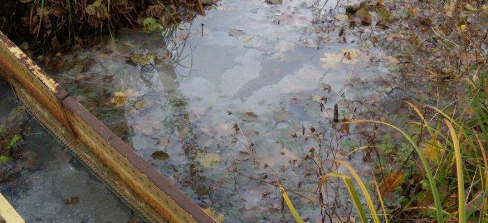 Zanieczyszczone jezioro cz.III- dlaczego dekalcyfikacja tak �mierdzi