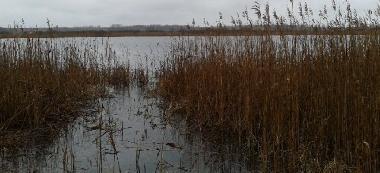 Jezioro S³one we wsi Chutcze, pow. che³mski.