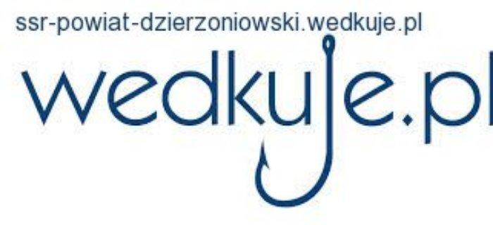 Strona internetowa SSR