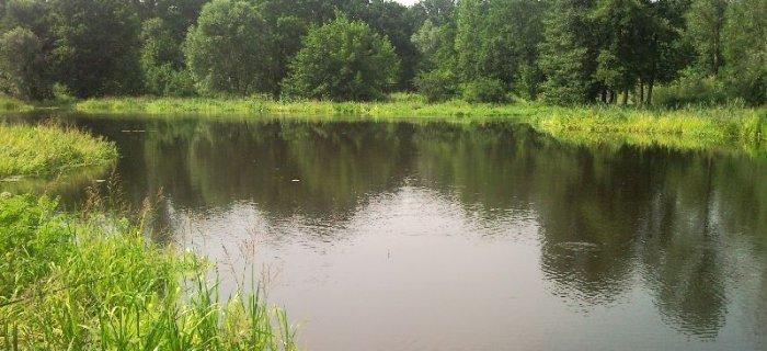 Rzeka O�awa, w pobli�u Parku Wschodniego.
