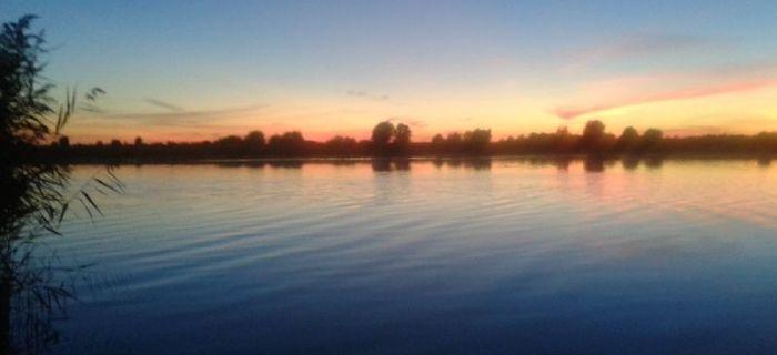 Rzeka Nogat – Zr�nicowane brania Karasia Srebrzystego i Lina