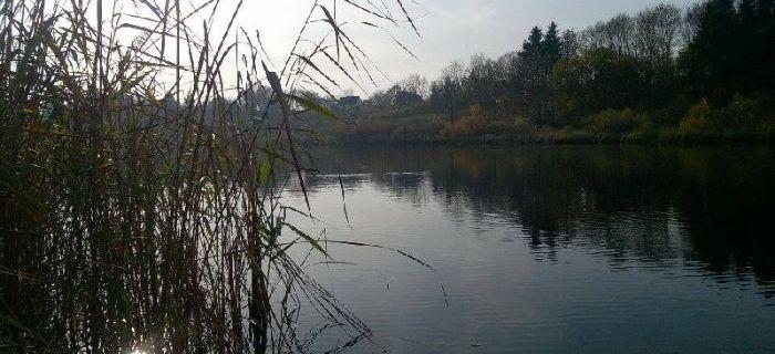 Jezioro Drzewiany I (J-44)