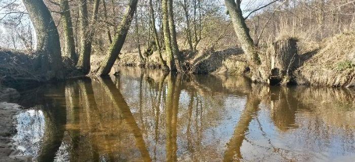 Rzeka Wo³cza